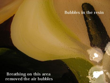 breathing on the resin removes the bubbles...really!