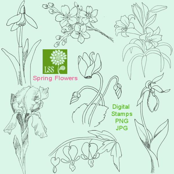 lss_spring_flowers_preview