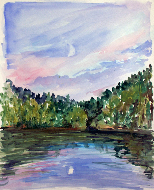 """I'm calling this the """"moonlight paddle painting"""" because I painted it from the canoe in the middle of the pond."""