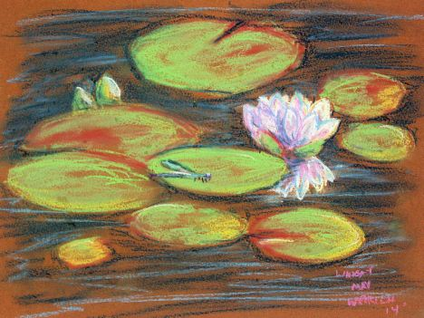 Waterlily in pastel the day it bloomed.