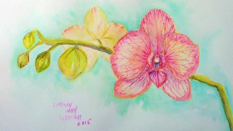 orchidthumb