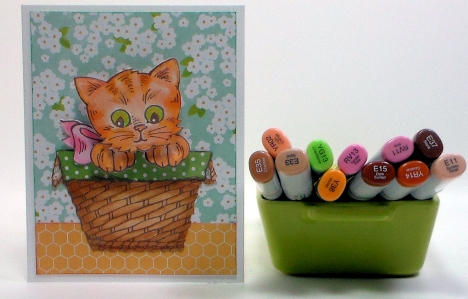 kittenblog