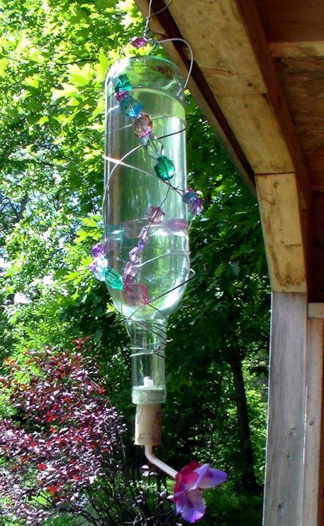hummingbirfblog