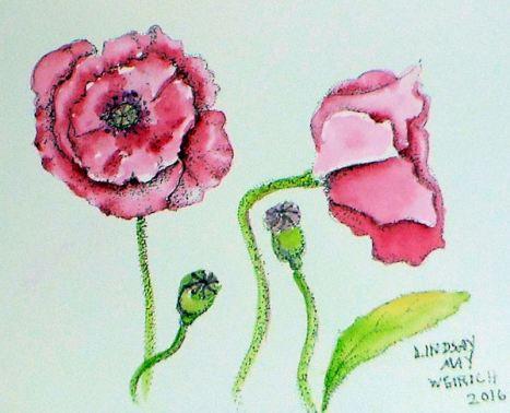 poppyblog2