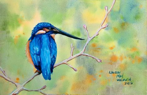 kingfisherblog