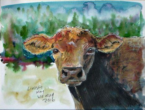 cow_color