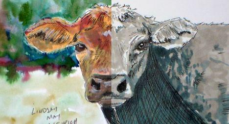 cow_mixed_thumb