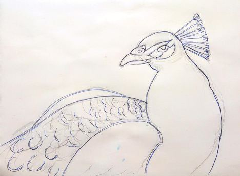 peacock_pattern