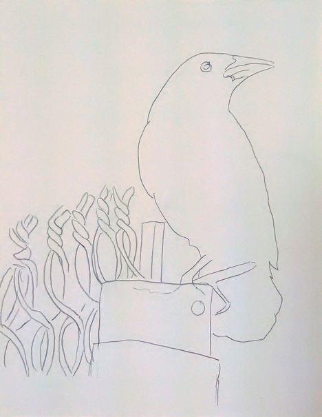 crowpattern