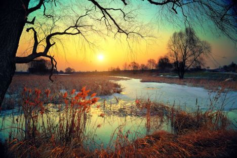 Winter rural landscape at sunset