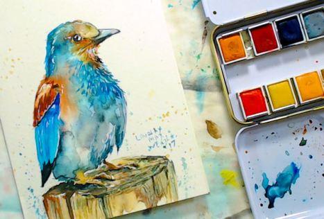 birdblog