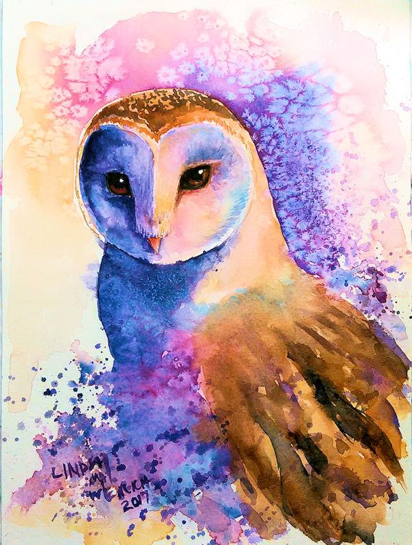 owlblog