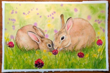 bunnyblog
