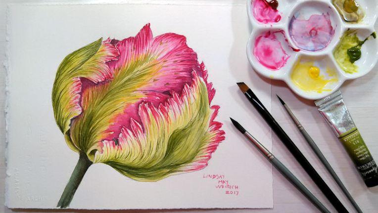 tulip_1_blog