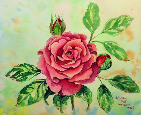Lweirich_rose_with_glazes