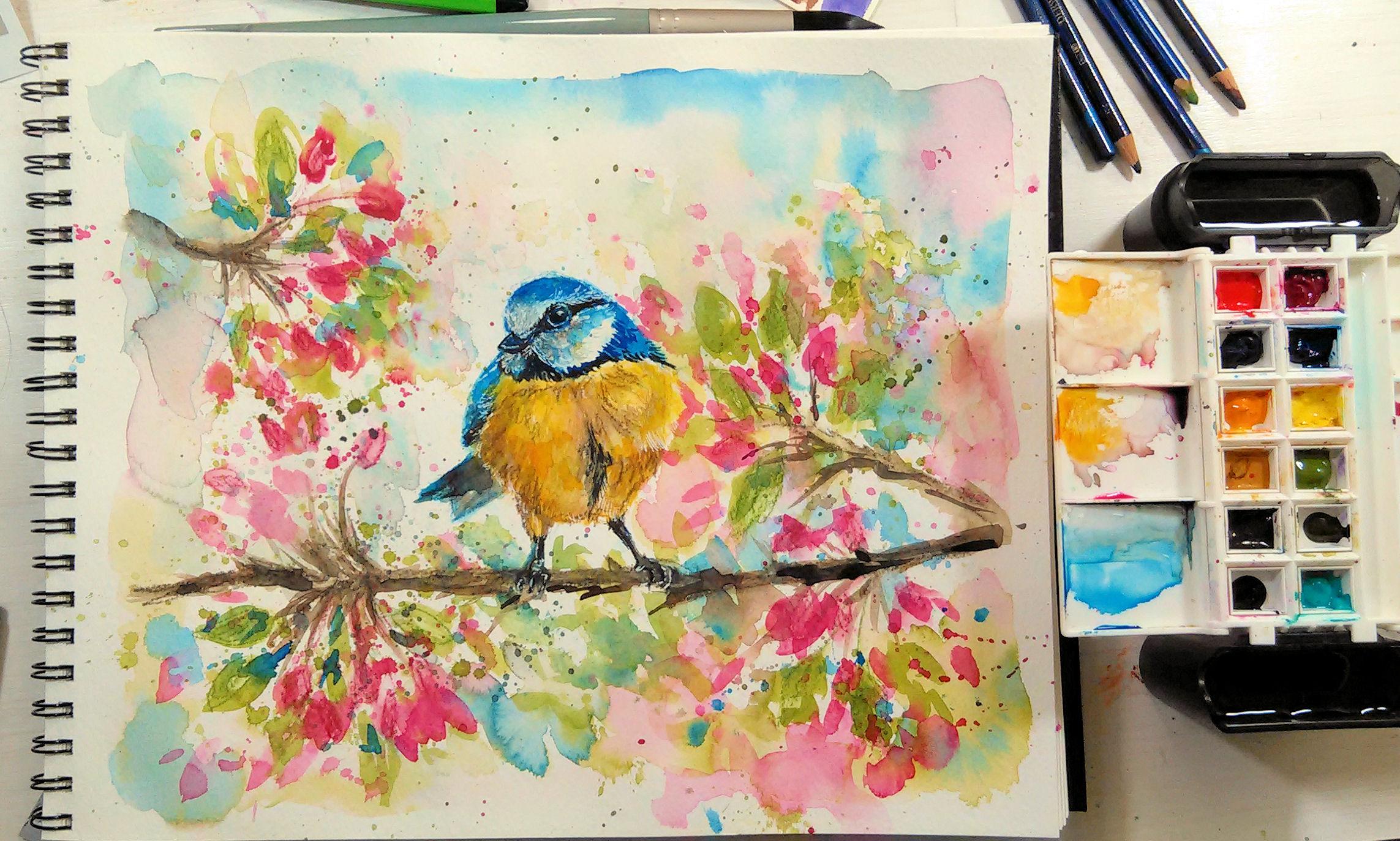 loosebirdsketch
