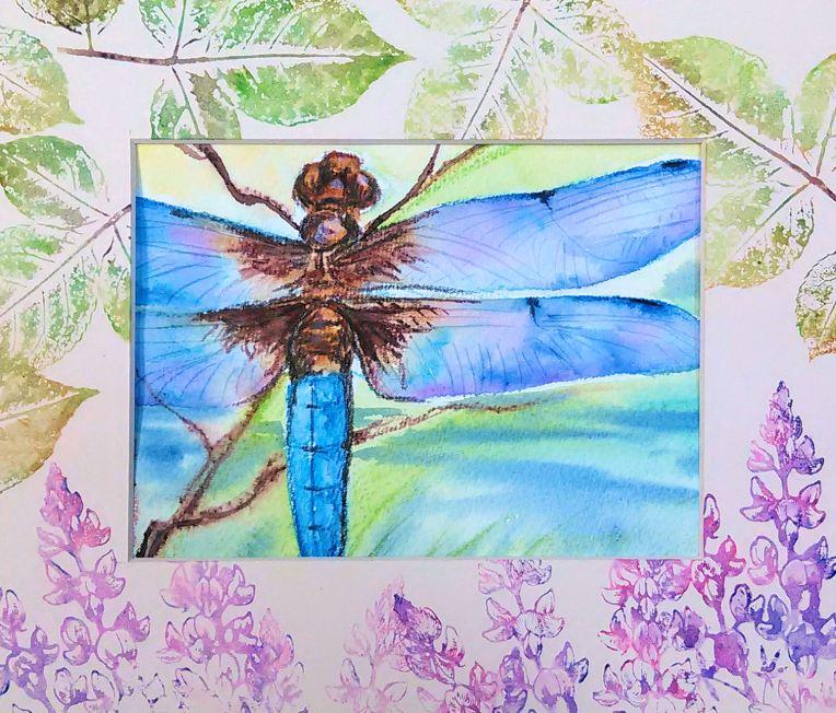 dragonflyfinal