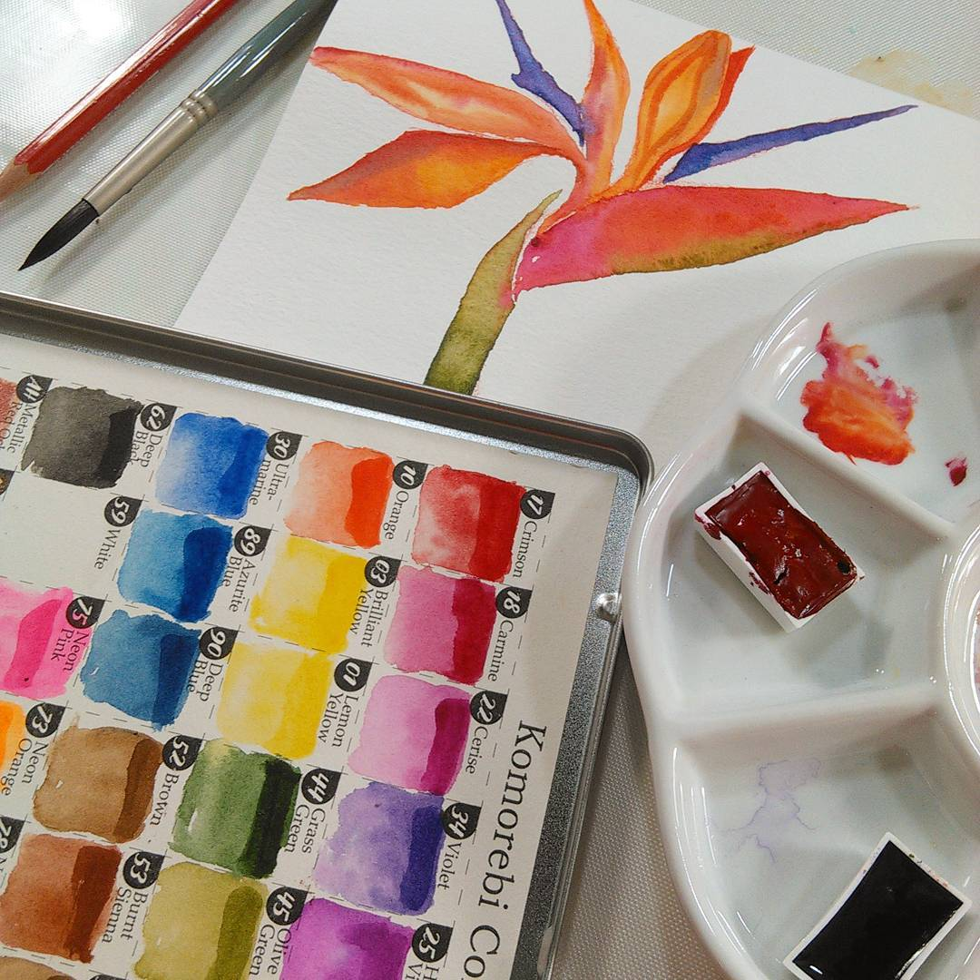 How To Draw and Paint a Bird of Paradise Flower (for beginners) and a Cheap Paint Review!