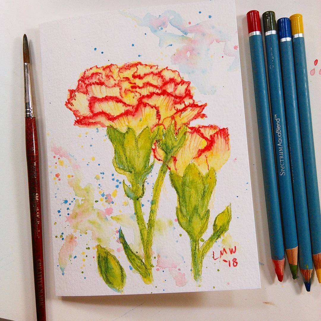 Easy-Peasy Watercolor Pencil Project: Carnations!