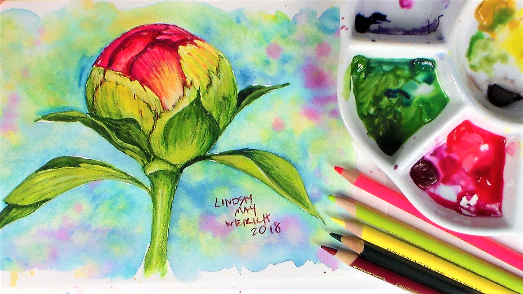 10 Tips for Using Cheap Watercolor Supplies PLUS 5 Reason Cheap Watercolors are Great!