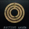 Ancient Amber Sample
