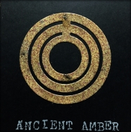 Ancient Amber Sample