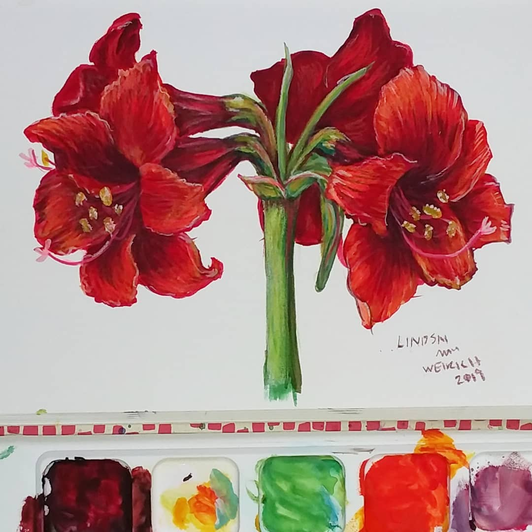 Amaryllis in Gouache Sketchbook Sunday!
