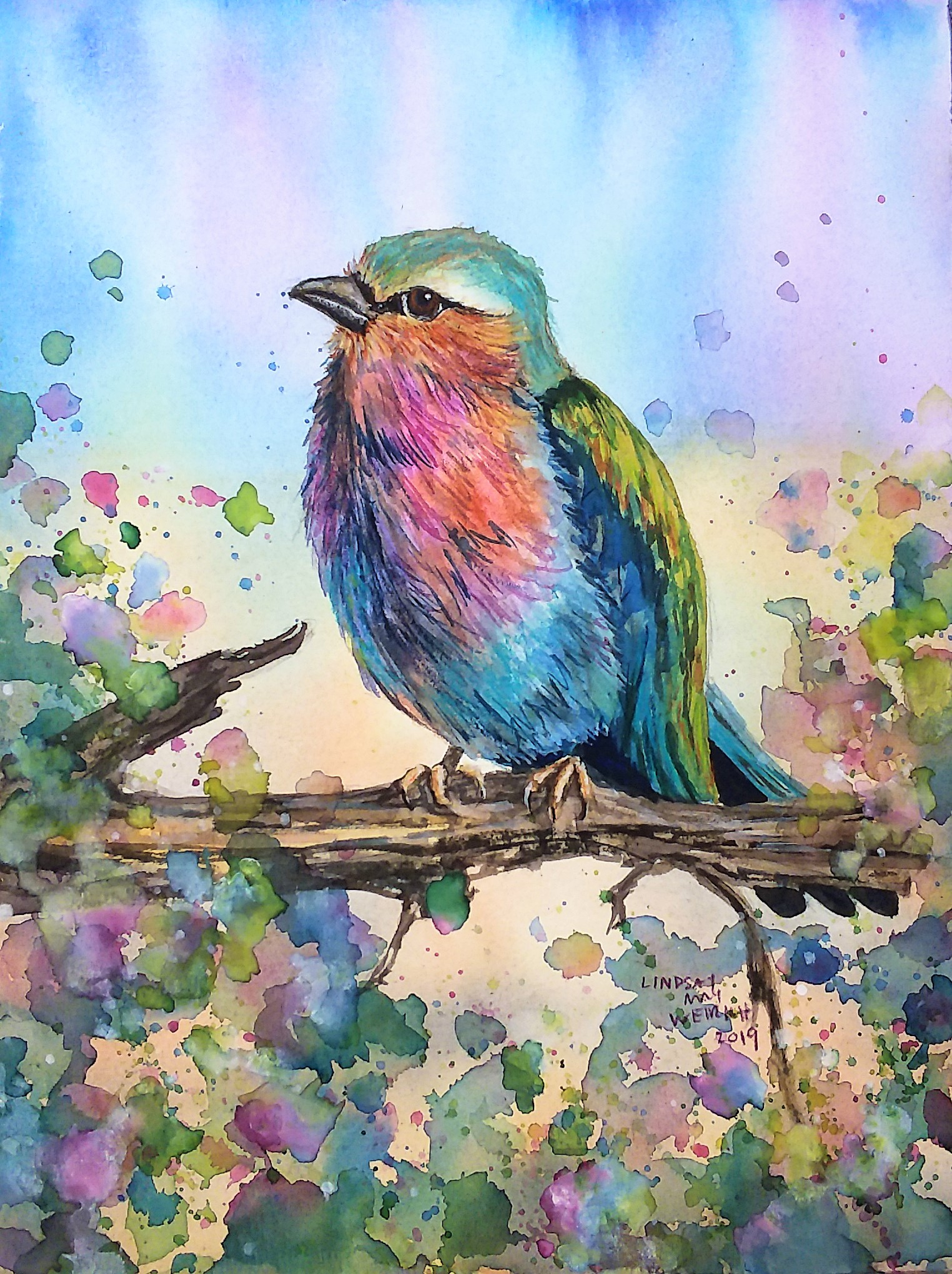 Lilac Breasted Roller Sketchbook Sunday & Last Day for 40% Off!