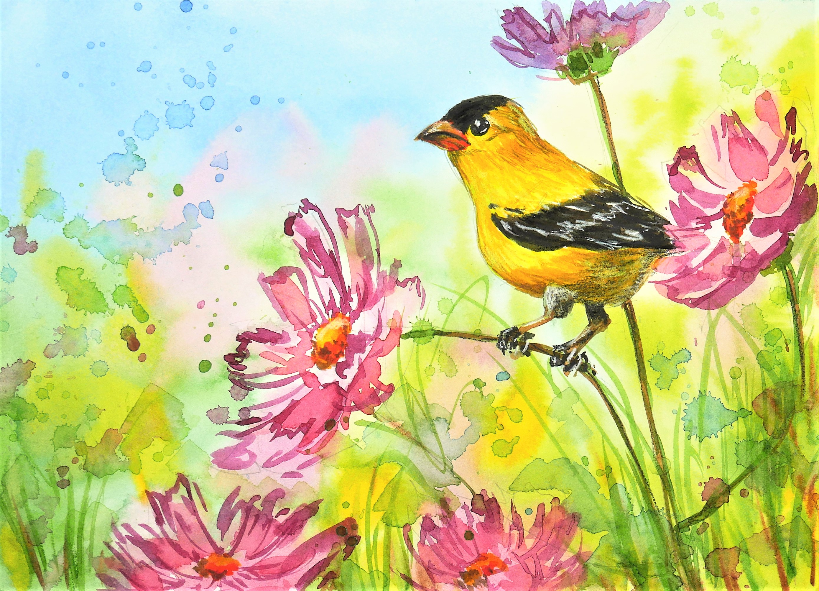 Easy Goldfinch and Cosmos in Watercolor Tutorial