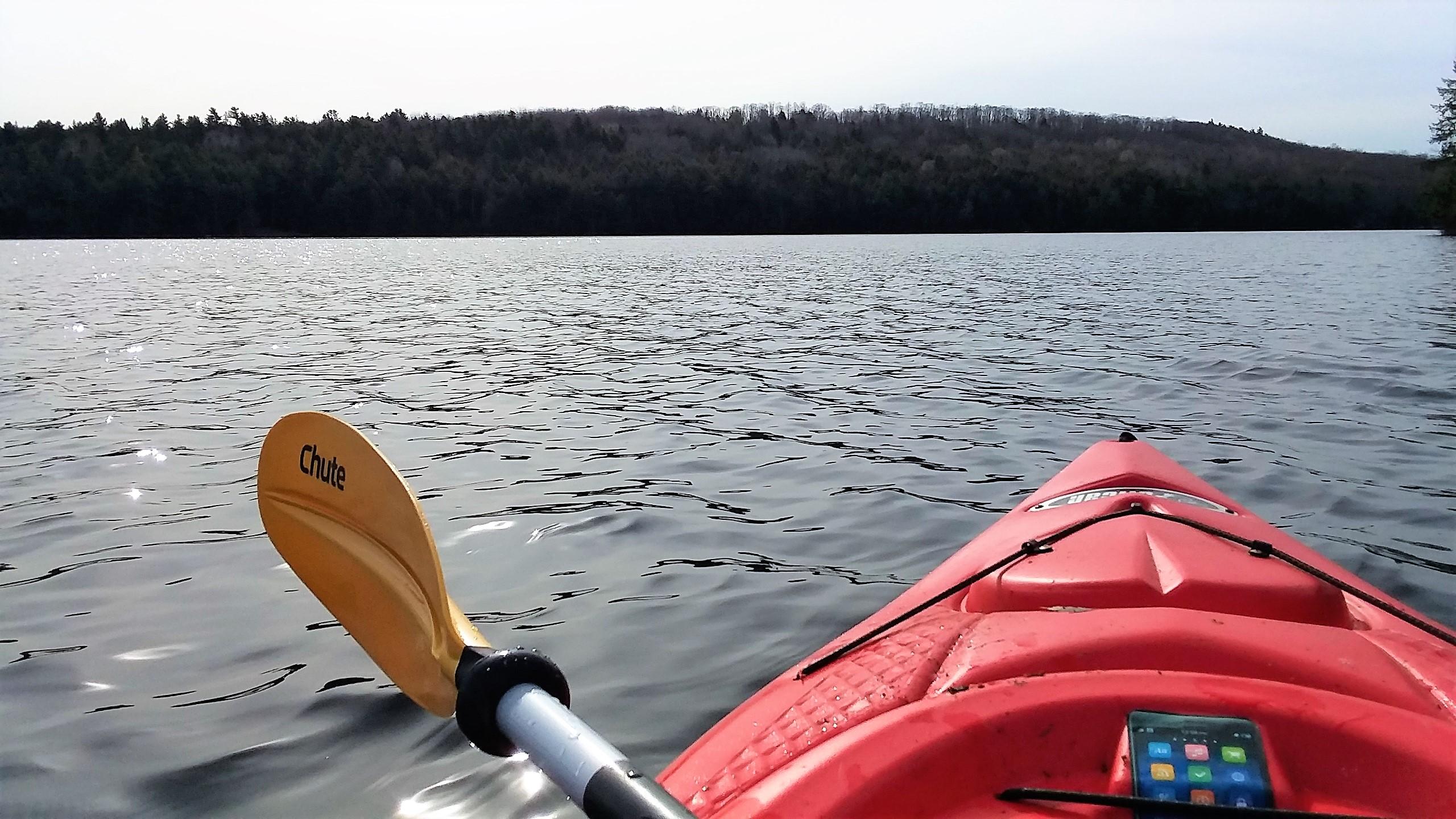 paddle1
