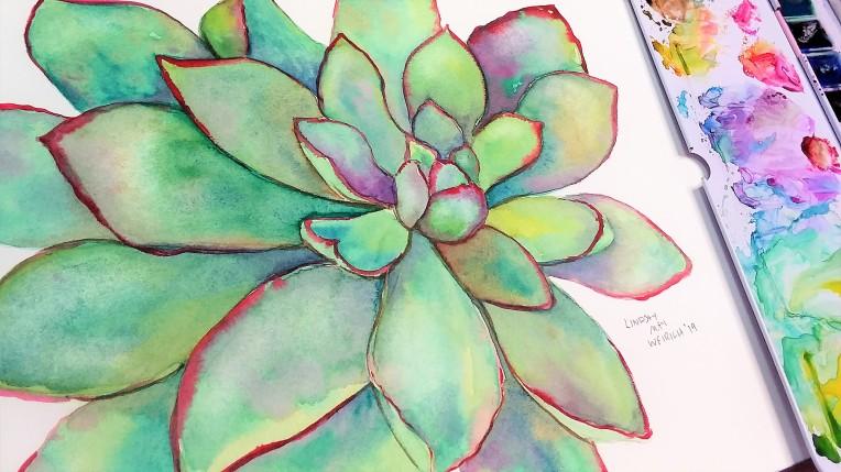 succulent_thumb2